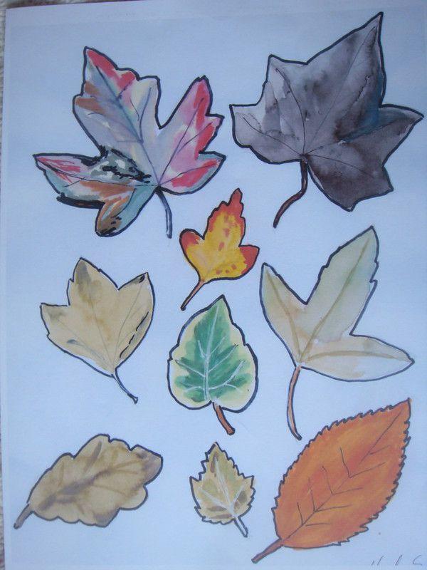 Dessins de feuilles mortes centerblog - Dessin feuille morte ...