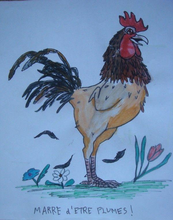 Animal marrant. un Coq