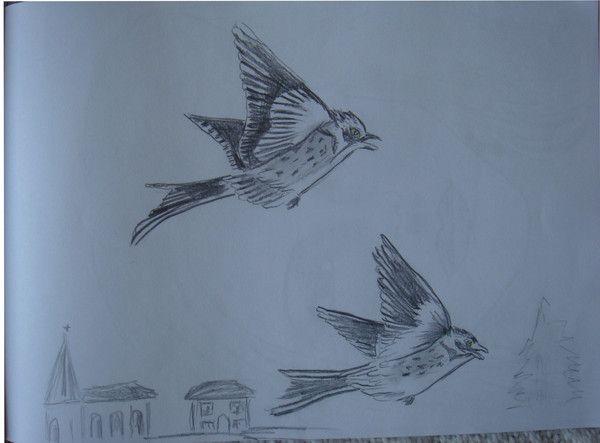 Deux petits oiseaux en plein vol centerblog - Dessin oiseau en vol ...