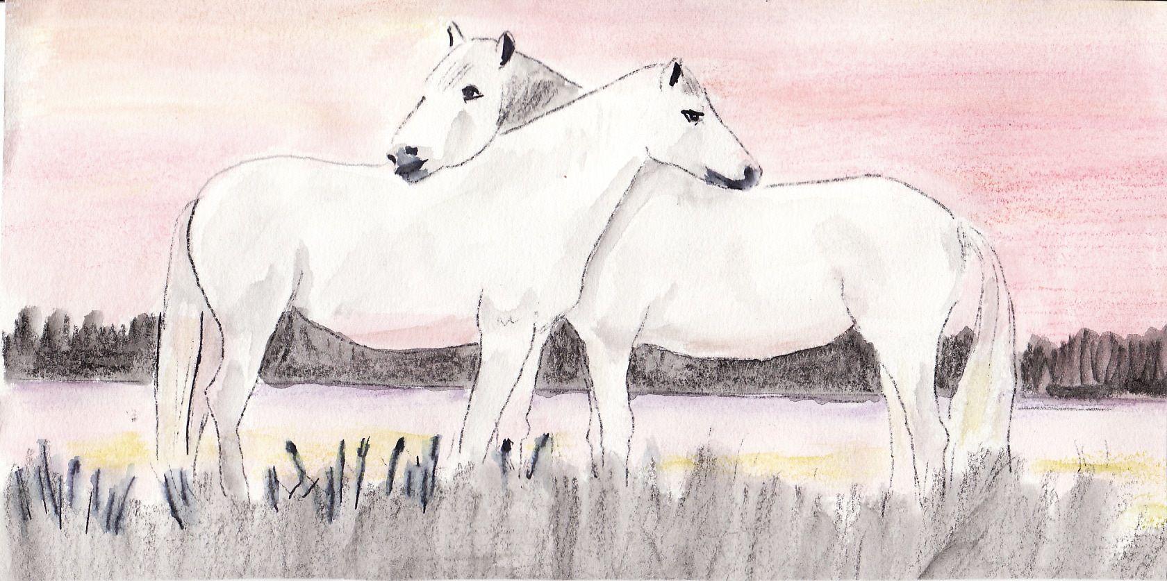 Cheval - Dessin de cheval magnifique ...