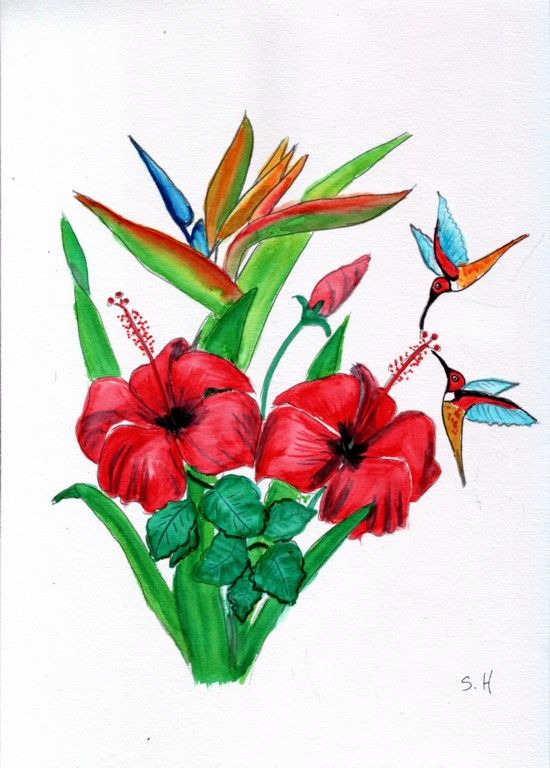 Fleur et oiseaux mouches - Oiseau mouche dessin ...